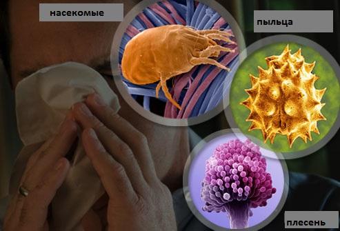 чем лечить аллергический насморк