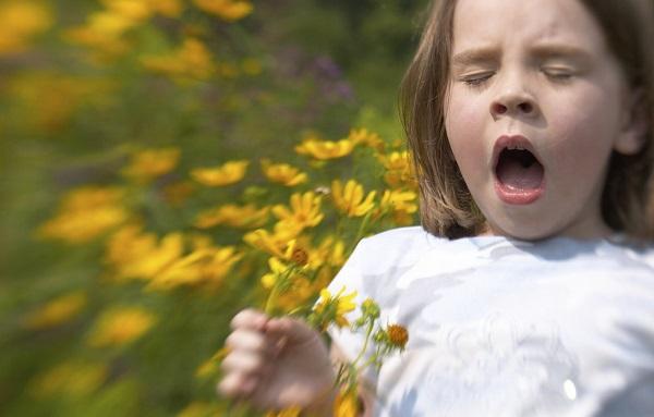 аллергия май