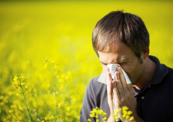 вазомоторный аллергический ринит отличие