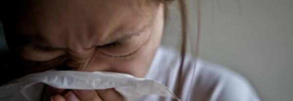 список бытовых аллергенов