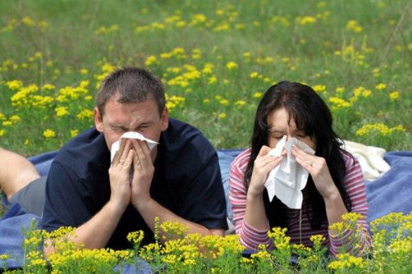 vidy-allergenov-3
