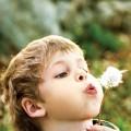 Как избавиться от аллергии навсегда