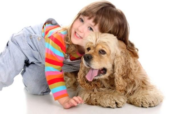 что делать при аллергии на собаку