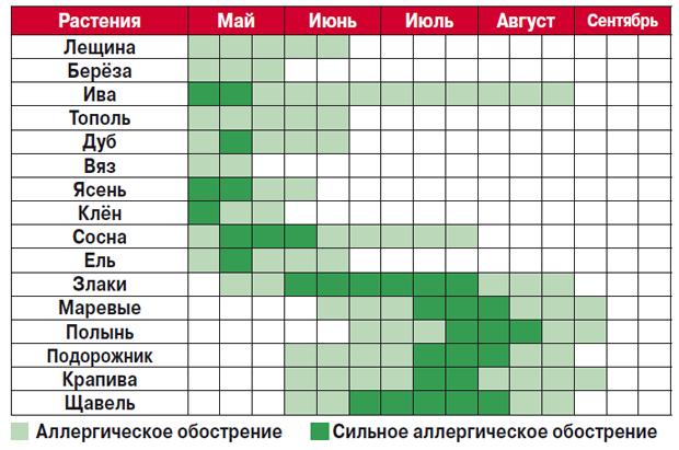 Календарь цветения растений для аллергиков