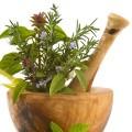 Травы от аллергии: лечение аллергии травами