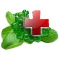 Лечение атопического дерматита народными средствами